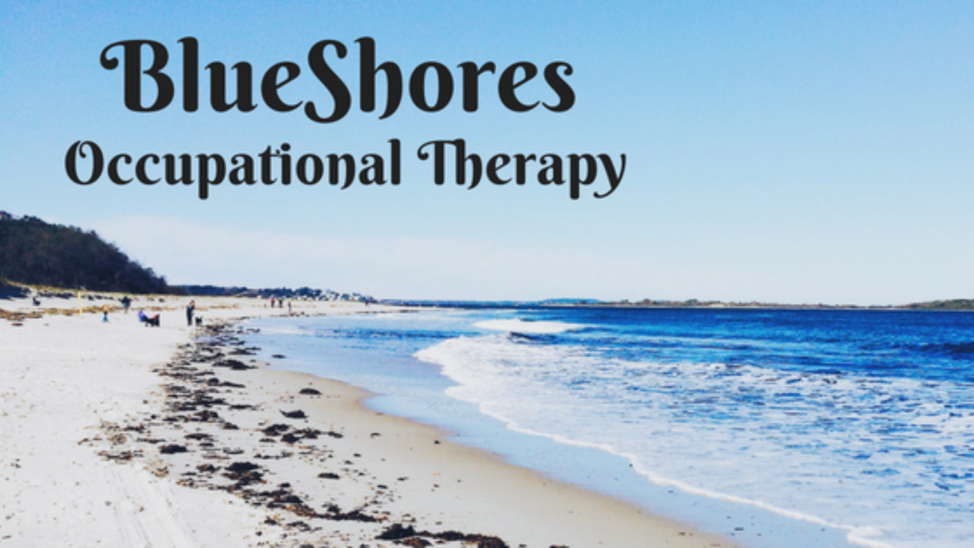 Blue Shores Occupational Therapy